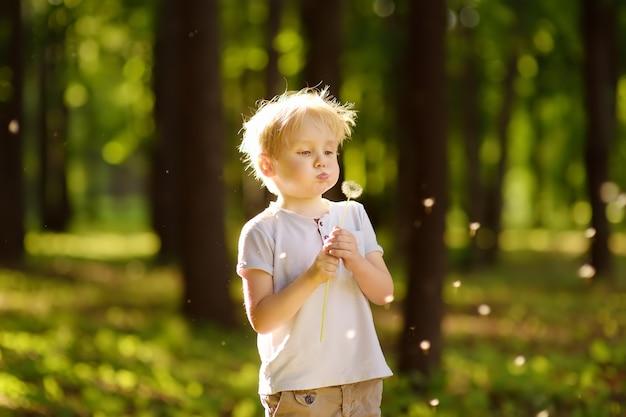 Mały chłopiec rozdmuchuje puch mniszka lekarskiego. życzenie.