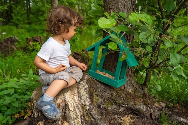 Mały chłopiec siedzi na pniu drzewa i karmi ptaki i zwierzęta w parku