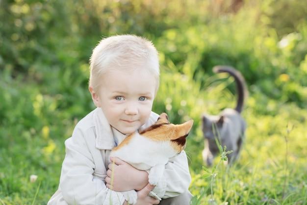 Mały chłopiec trzyma kotka w słoneczny letni dzień