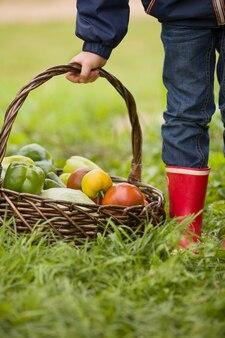 Mały chłopiec trzymający kosz ze świeżo zebranymi ekologicznymi warzywami pomidorami papryką ogórkami
