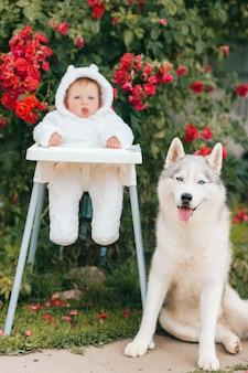 Mały chłopiec w kostiumie niedźwiedzia z uroczym portretem przyjaznego szczeniaka husky