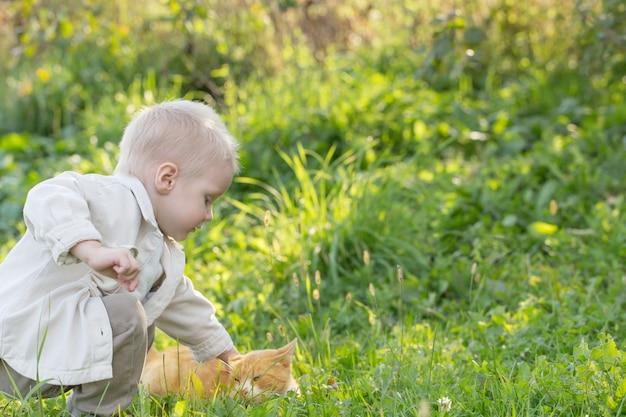 Mały chłopiec z kotem w słoneczny letni dzień