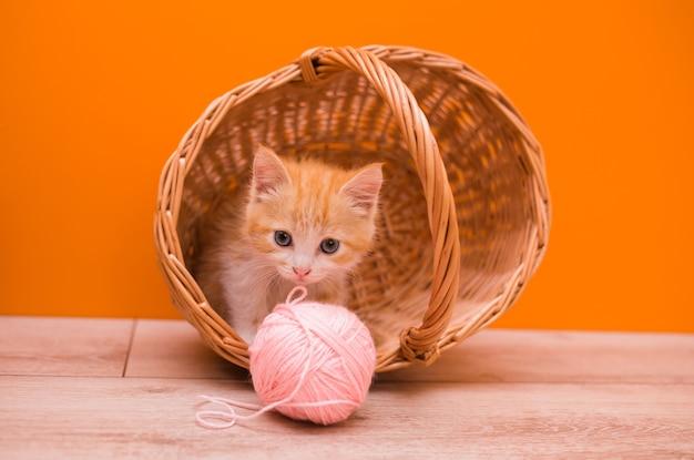 Mały czerwony kotek siedzi w wiklinowym koszu i bawi się różową kulką wełny na pomarańczowym tle