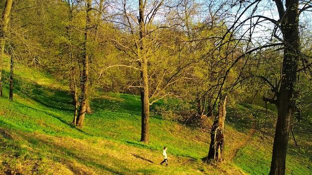 Mały człowiek idzie przez ogromny las