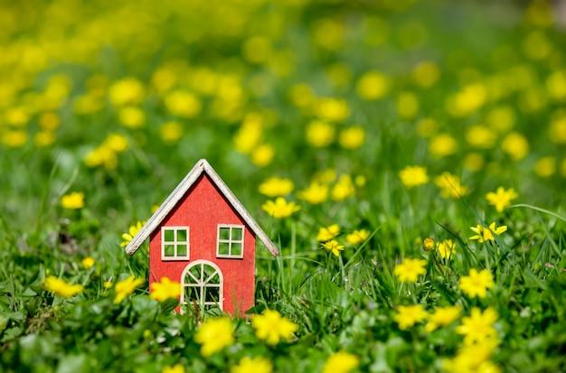 Mały domek na łące z żółtymi kwiatami w okresie wiosennym