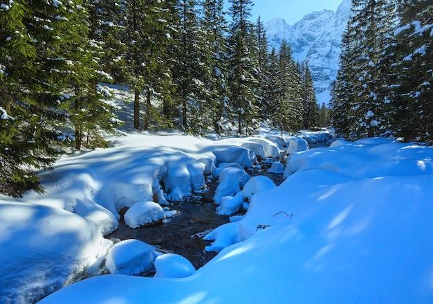 Mały górski potok z zaspami śnieżnymi i lasem jodłowym na brzegach