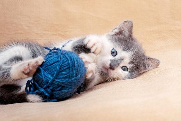 Mały kotek bawi się piłką z niebieskich nitek