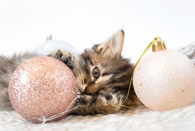 Mały kotek leży i bawi się bombkami.