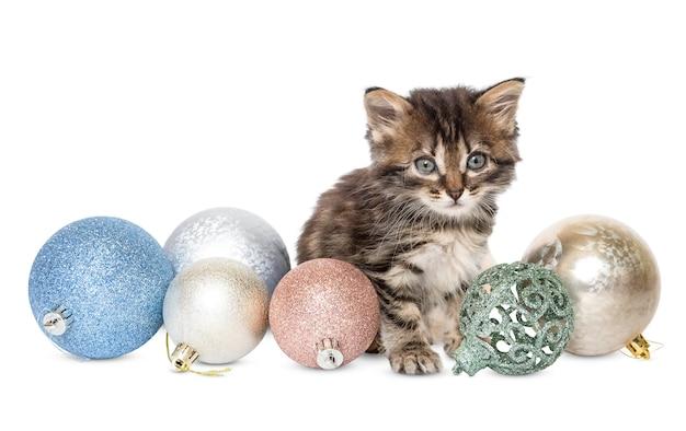 Mały kotek siedzi i bawi się bombkami na białym tle
