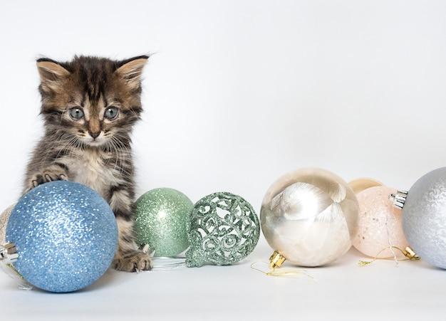 Mały kotek siedzi i bawi się bombkami