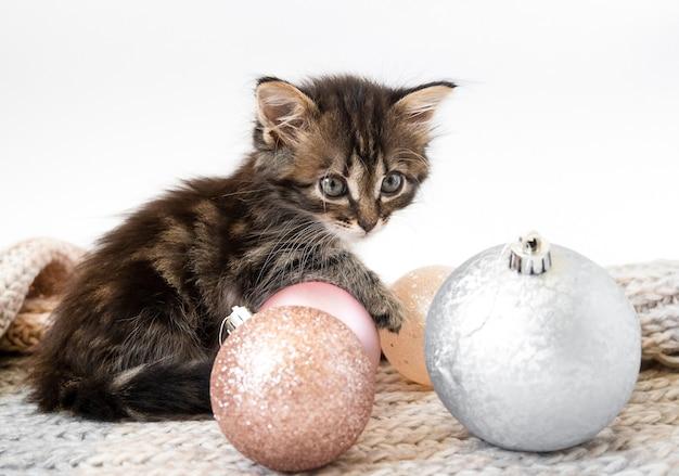 Mały kotek siedzi i bawi się bombkami.