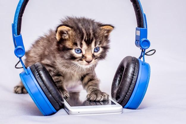 Mały kotek w paski w pobliżu telefonu komórkowego i słuchawek. włącz telefon i słuchaj muzyki. opanowanie nowoczesnych technologii_