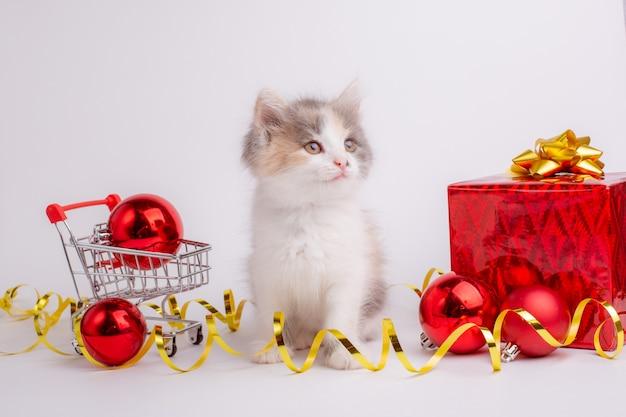 Mały kotek z koszykiem supermarketu na białym tle boże narodzenie w tle