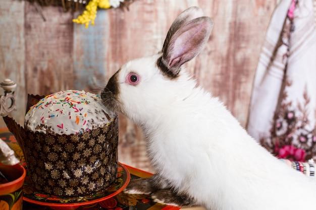 Mały króliczek w koszu ze zdobionymi jajkami