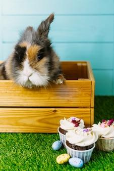 Mały króliczek w koszyku z udekorowanymi jajkami i easter cupcake -