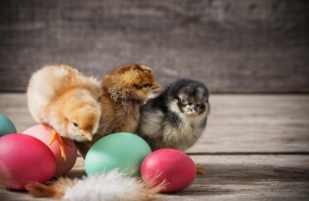 Mały kurczak i wielkanocni jajka na drewnianym stole