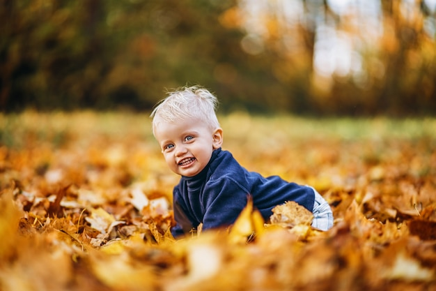 Mały ładny chłopczyk bawić się na świeżym powietrzu w parku w okresie jesiennym.