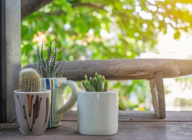Mały piękny kaktus w puli i filiżankę kawy na drewniane biurko z rozmycie tła