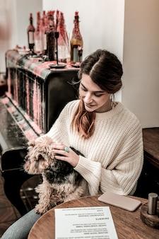 Mały pies. młoda kobieta odwiedza kawiarnię ze swoim terierem