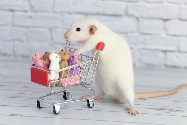 Mały słodki biały szczur obok wózka spożywczego jest pełen kolorowych misiów. zakupy na rynku. kupowanie prezentów na urodziny i święta.