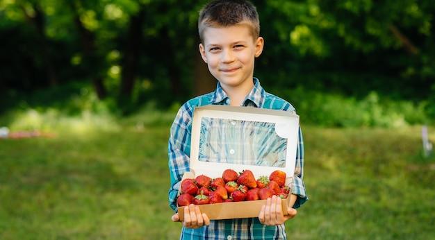 Mały słodki chłopiec stoi z dużym pudełkiem dojrzałych i pysznych truskawek. żniwa. dojrzałe truskawki