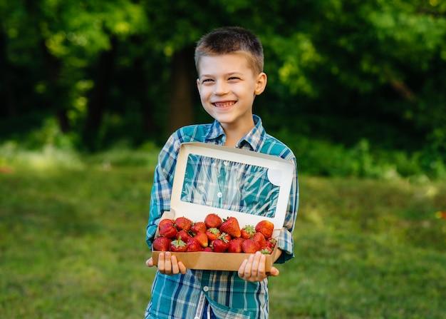 Mały słodki chłopiec stoi z dużym pudełkiem dojrzałych i pysznych truskawek