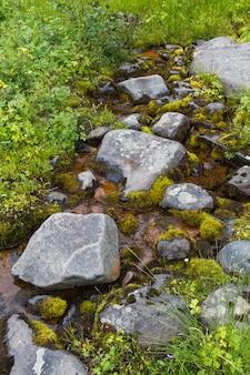 Mały strumień w północnej syberii. kamienie i mech. terytorium krasnojarska.