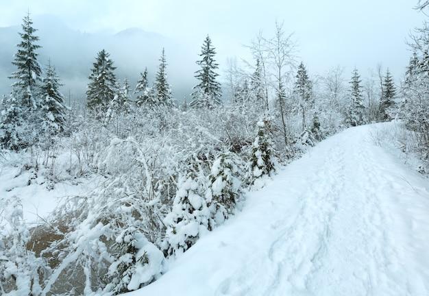 Mały strumień zimowy z ośnieżonymi drzewami na brzegu i ścieżce.