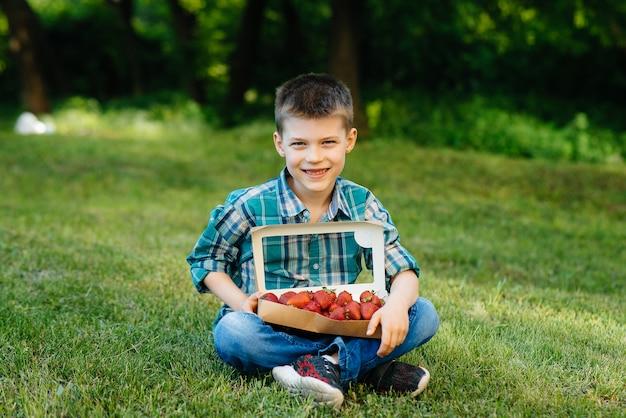 Mały uroczy chłopiec siedzi z dużym pudełkiem dojrzałych i pysznych truskawek.
