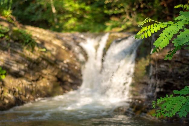 Mały wodospad górski w karpatach
