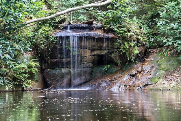 Mały wodospad w parku lage w rio de janeiro brazylia.