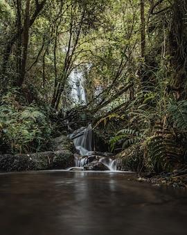 Mały wodospad w środku dżungli