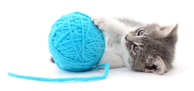 Mały zabawny kotek i szpon nici. na białym tle