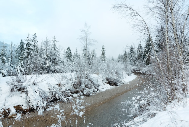 Mały zimowy strumień z ośnieżonymi drzewami na banku.