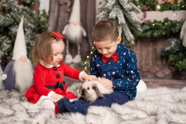 Małym dzieciom mikołaj podarował na boże narodzenie puszystego królika.