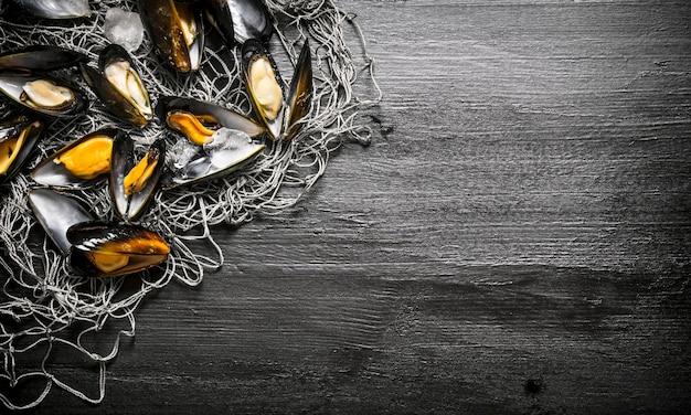 Małże na sieci rybackiej. na czarnym tle drewnianych. wolne miejsce na tekst. widok z góry