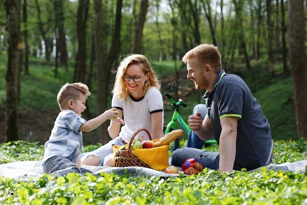 Mama, tata i mały chłopiec smakują jabłka siedzące na trawie podczas pikniku w parku