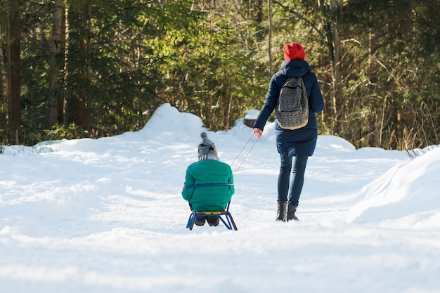 Mama wozi syna na sankach przez pokryty śniegiem las iglasty. zimowy słoneczny dzień. widok z tyłu.