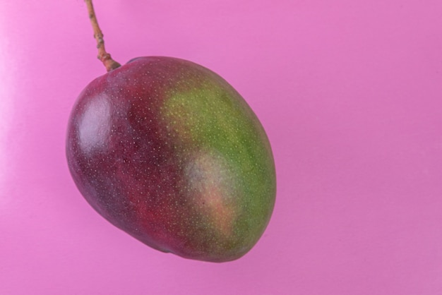 Mango na różowej powierzchni