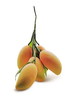 Mango z repliki wykonane jest z tworzywa sztucznego ze ścieżką przycinającą.