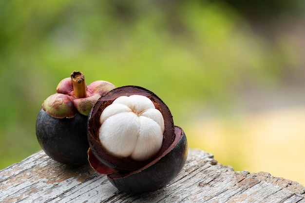 Mangostan lub garcinia mangostana owoce na tle przyrody.