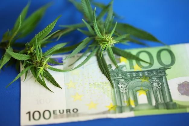 Marihuana, zioło do palenia - kwiat marihuany i haszysz nielegalne za pieniądze z euro.