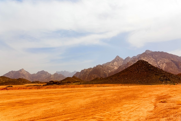 Martwa gorąca pustynia