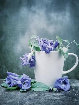 Martwa natura niebieski grochu lub motyl groszku w fili? ance kawy na drewno.