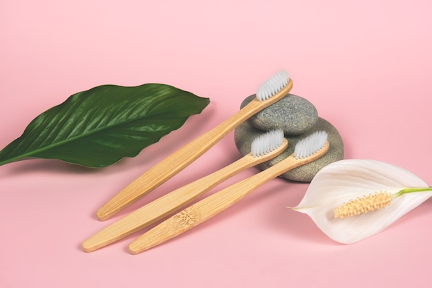Martwa natura z bambusowymi szczoteczkami do zębów, kamieniami i zielonymi liśćmi na różowym tle
