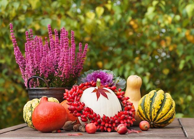 Martwa natura z dyniami, kwiatami, ręcznie robionym wieńcem i jesiennymi liśćmi na drewnianym tle. halloween, jesienna dekoracja ogrodu.