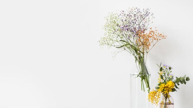Martwa natura z kwiatami z copyspace