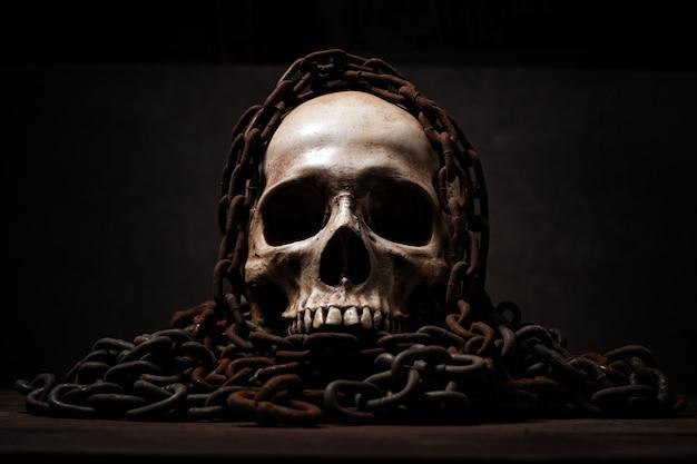 Martwa natura z ludzką czaszką, która umarła przez długi czas, koncepcja horroru lub thrillerów przedstawiających przerażające miejsce zbrodni, motyw halloween, sztuki wizualne