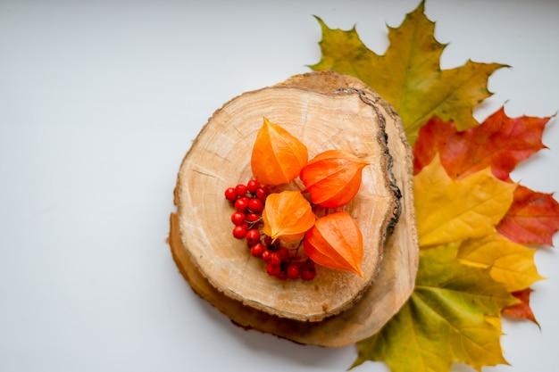 Martwa natura z żółtymi liśćmi, jagodami jarzębiny i pomarańczową pęcherzycą na drewnianym cięciu