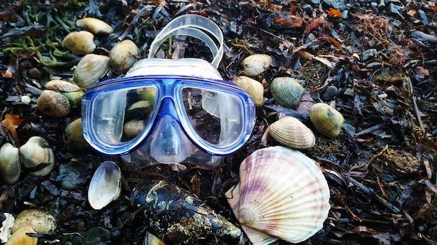 Maska do nurkowania i muszle na wybrzeżu morskim. wakacje nad morzem. lato.